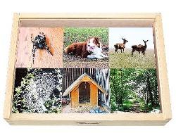 Mit Montessoriö-Material lernen wo Tiere zuhause sind.